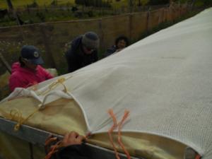 Patagonia-year-tarp