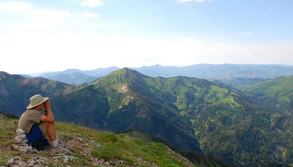 mountains-tetons