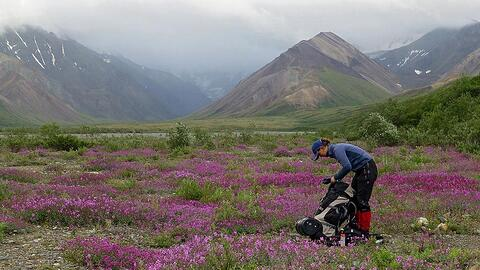 inge-davids-backpack-alaska