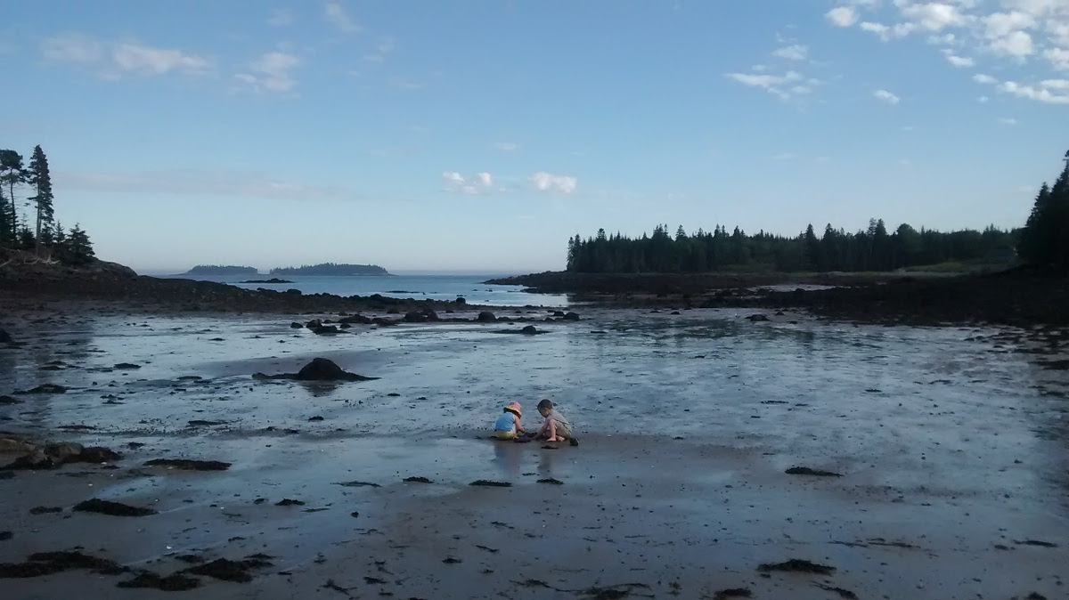 Author's children playing together at the beach