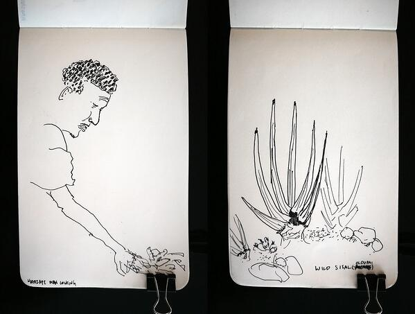 Hadzape hunter making a fire and wild sisal sketches