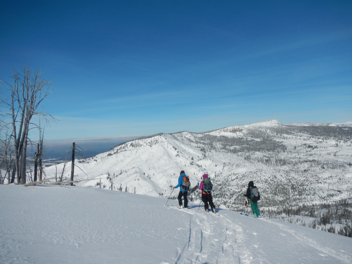 People backcountry skiing pause to look at the view