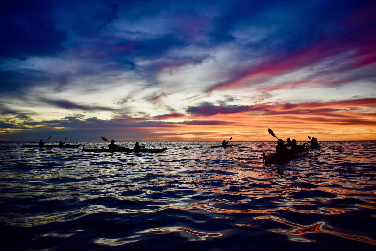 Students Sea Kayaking in Mexico at sunset