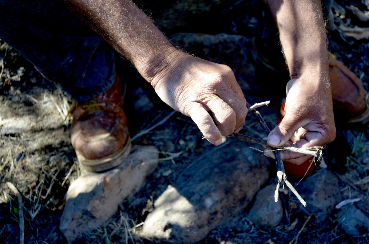 close-up of rancher's hands with sticks