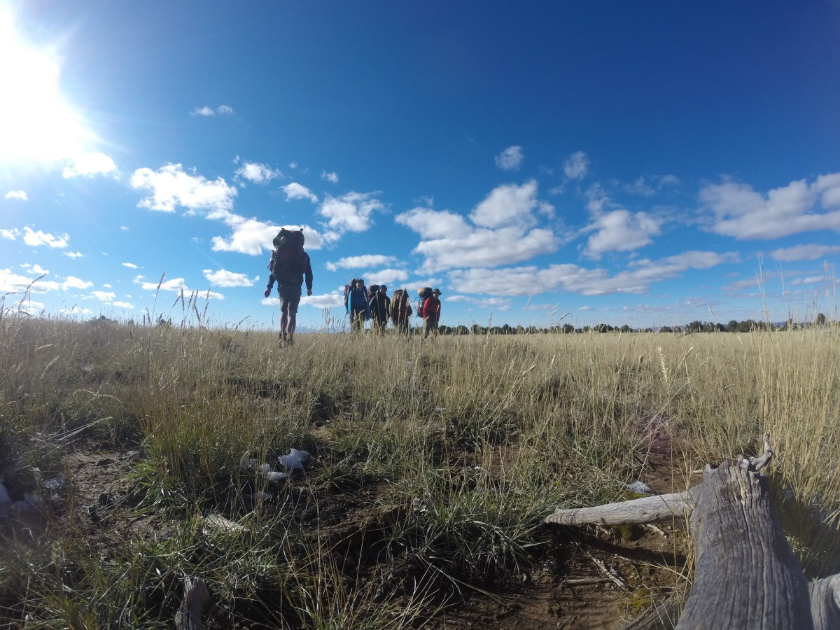 Backpackers hiking through grasslands