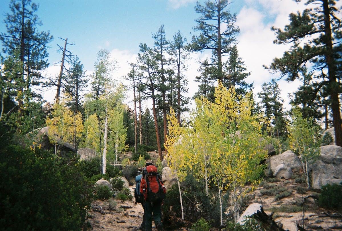NOLS students hike between trees in Baja California
