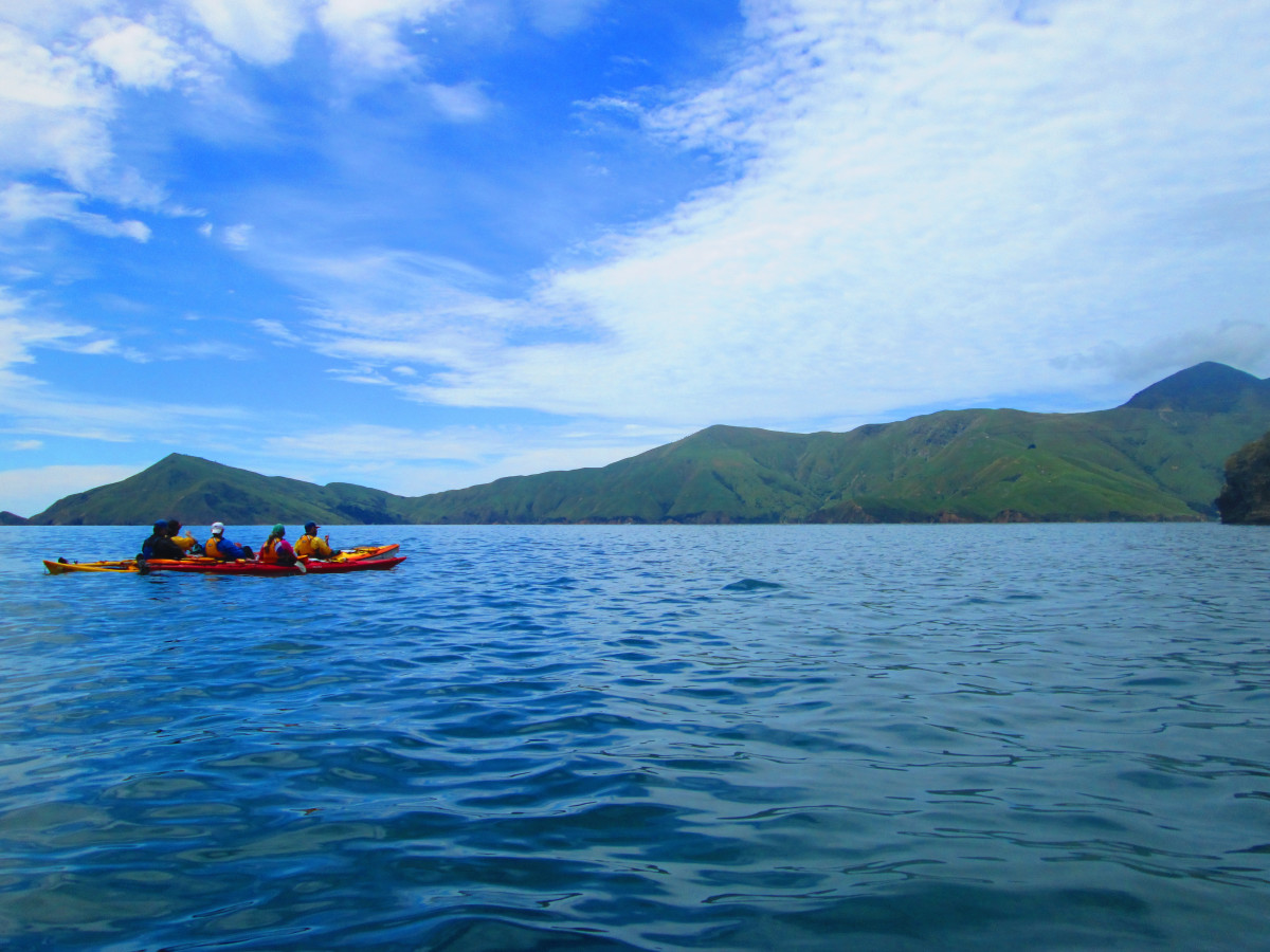 Kayakers on the coast with green hills in the background