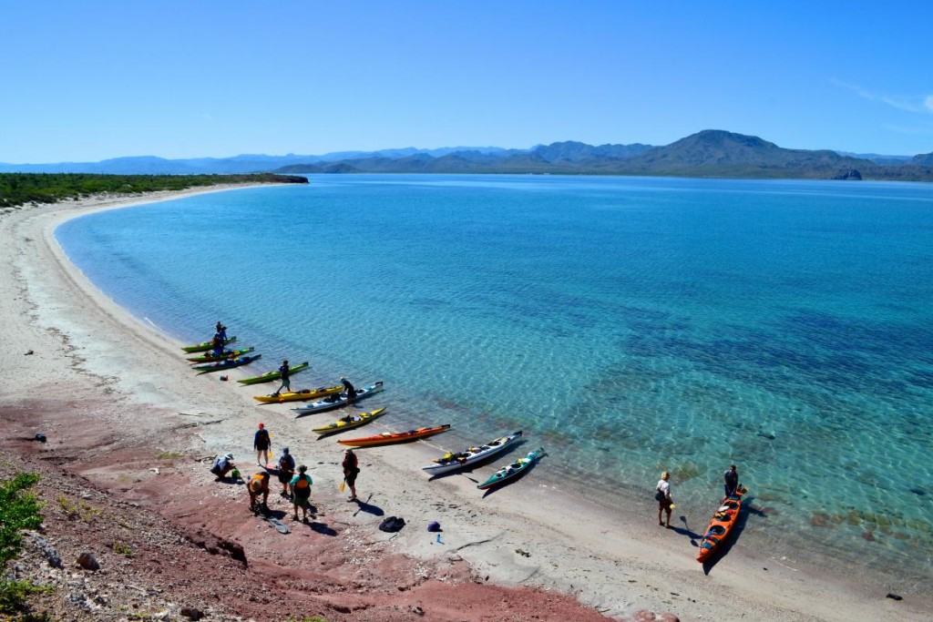 Group of kayaks beached on shore by clear blue water