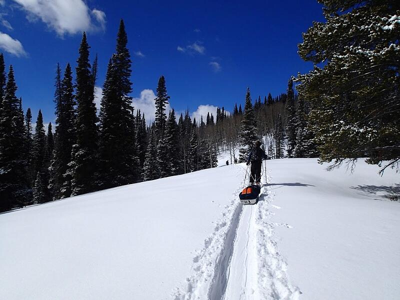 NOLS students haul sleds while backcountry skiing in the Rocky Mountains