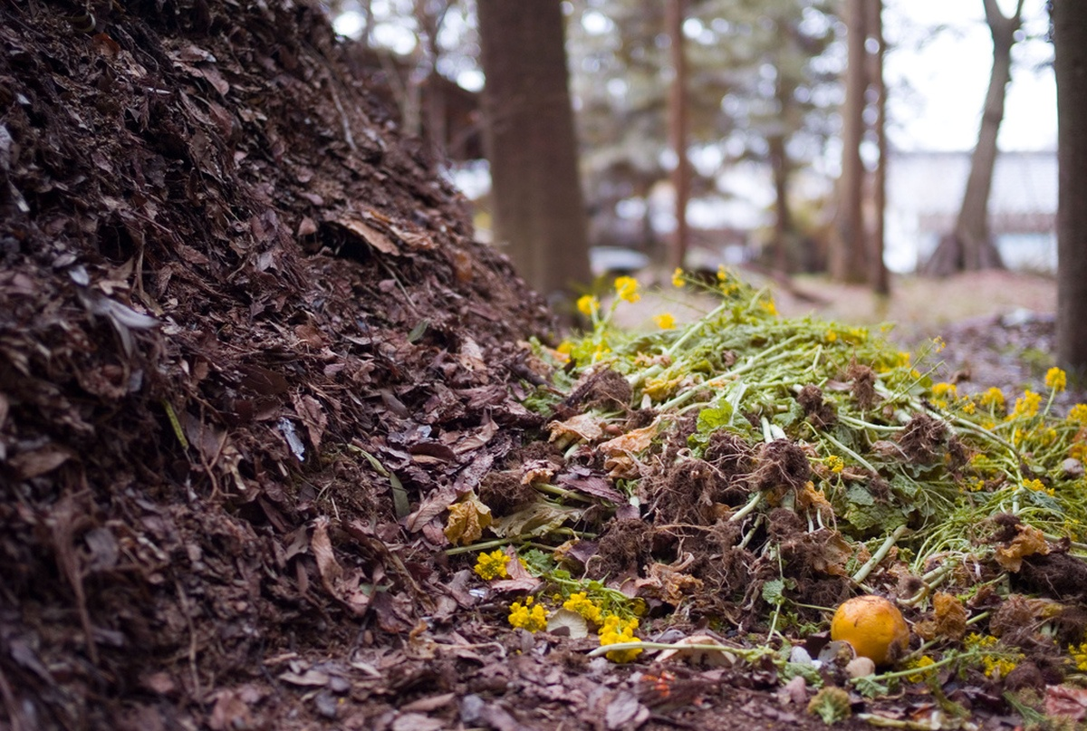 compost pile with organic material