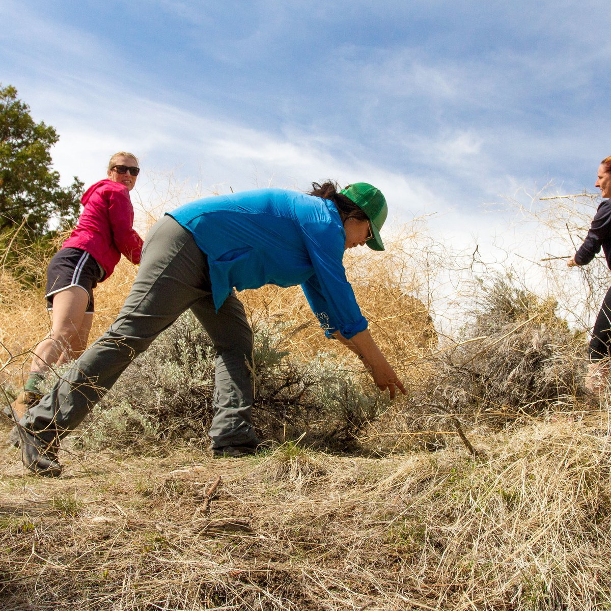 Three people perform trail maintenance