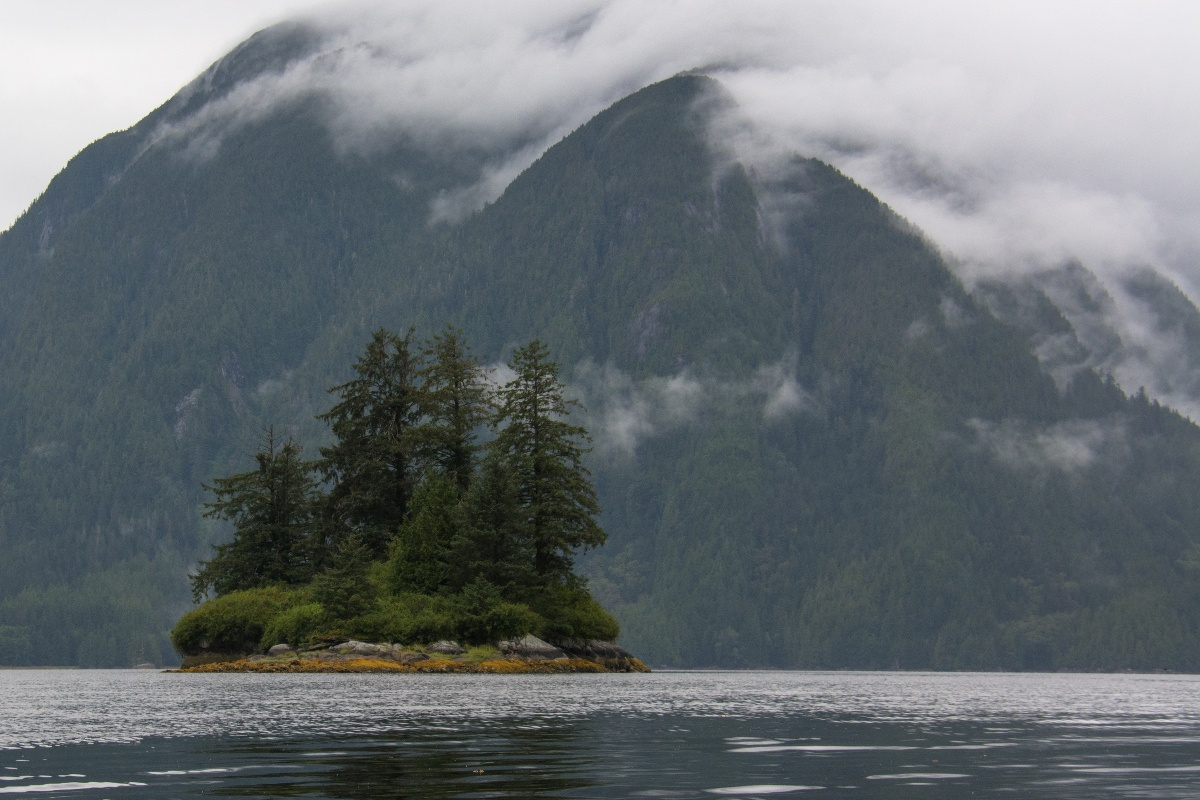 mist lies in the mountains and over small island with thick vegetation, surrounded by calm dark water