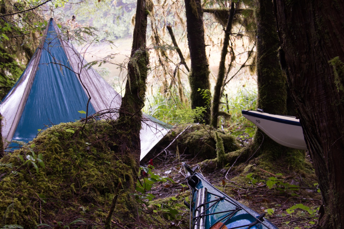 Blue and tan mega mid tent and kayaks in a mossy forested area