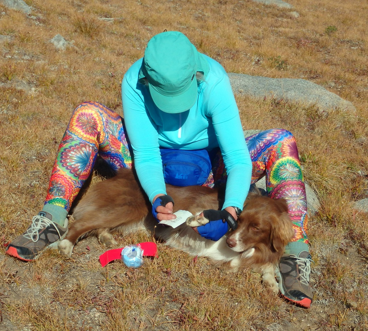 Person wearing colorful patterned leggings sits on the ground while caring for her dog's blistered paw