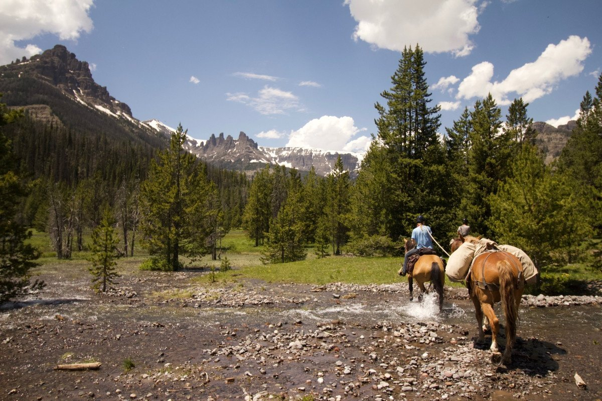 How to Take the Mountains Home: A Gateway Scholar Reflects on Horsepacking