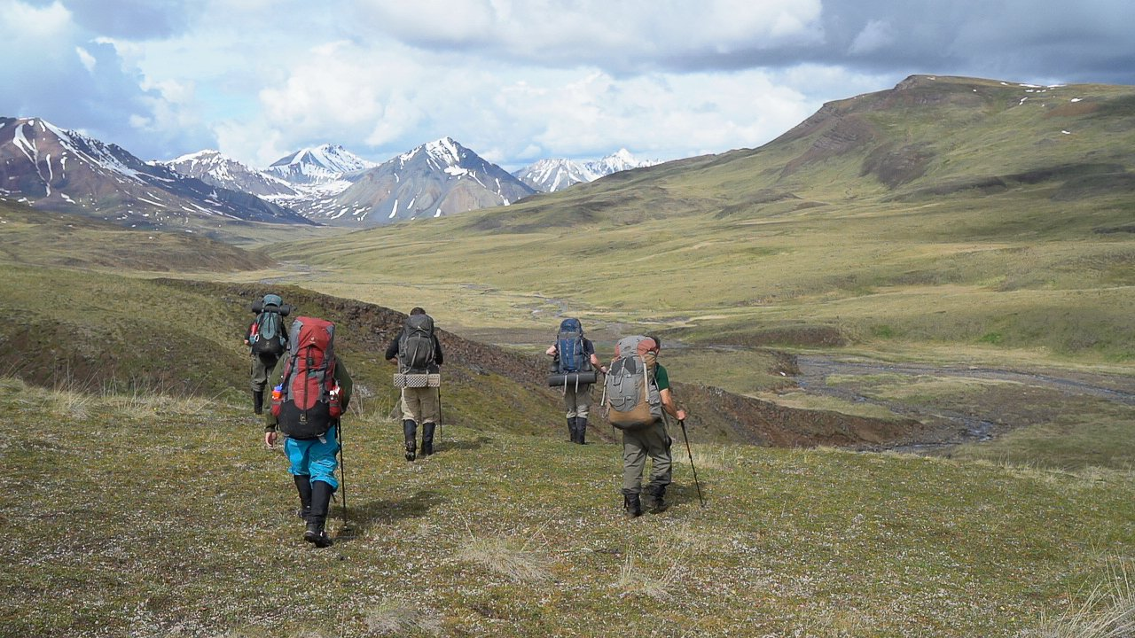 Four backpackers hike across a green valley in the mountains of Alaska