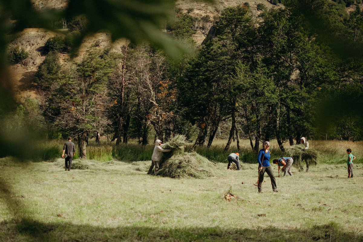 NOLS group hauls grass in a field in Patagonia