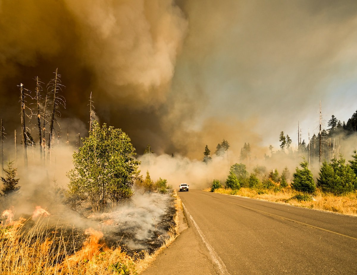 lone vehicle drives along a road with thick smoke from a wildfire