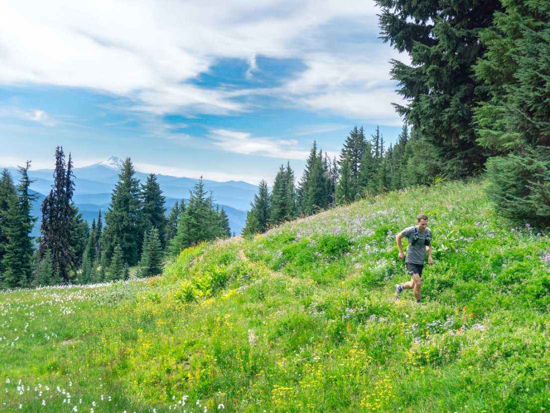 Runner in a grassy meadow lined with pine trees