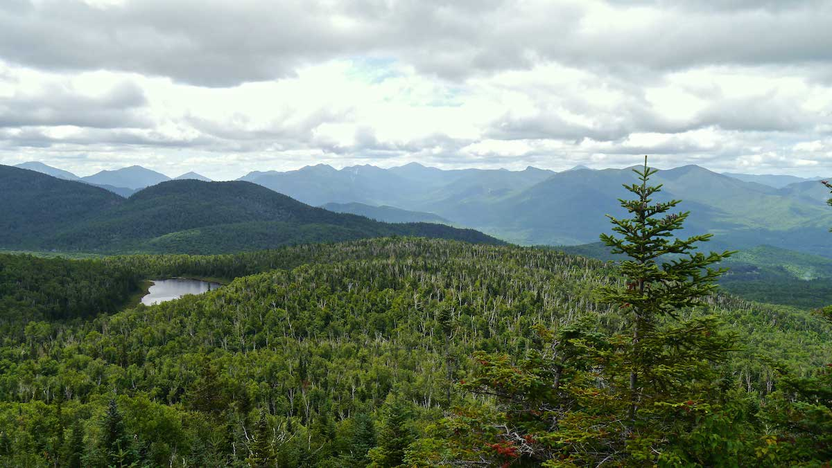 thick green forest in the Adirondacks with calm silvery lake below
