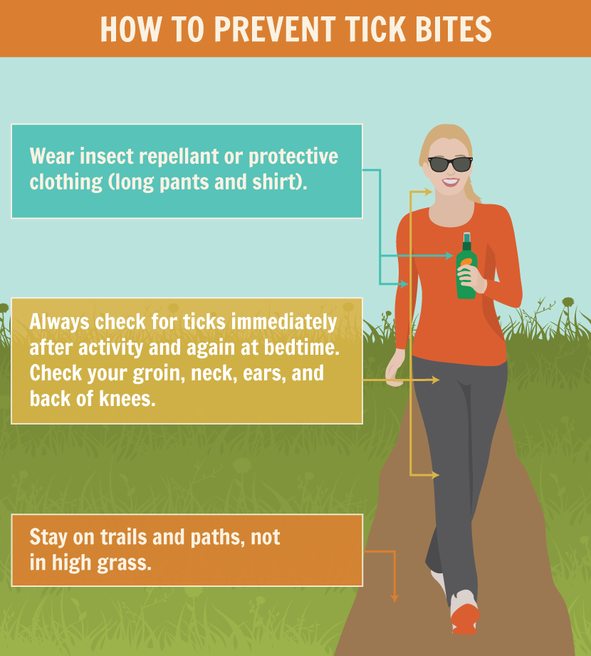 infographic with tips on preventing tick bites