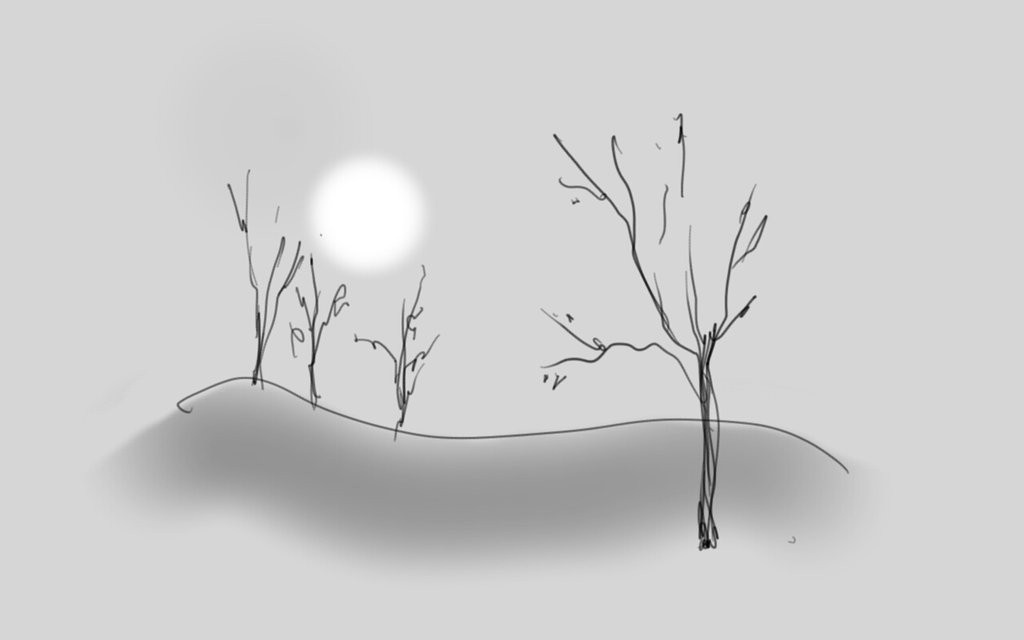Nature Sketch