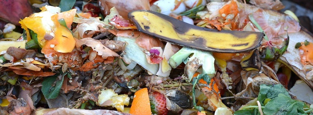 Decomposing fruit and vegetables