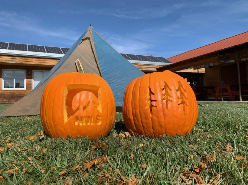 Add Some Wild to Your Halloween with Our Pumpkin-Carving Stencils