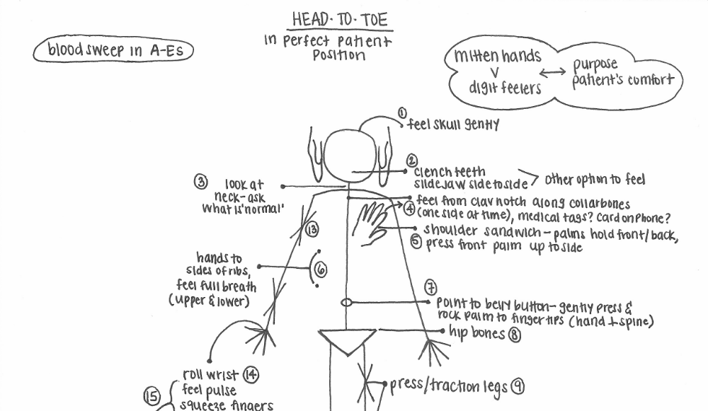 Patient Assessment: Visualizing the Head-to-Toe Exam