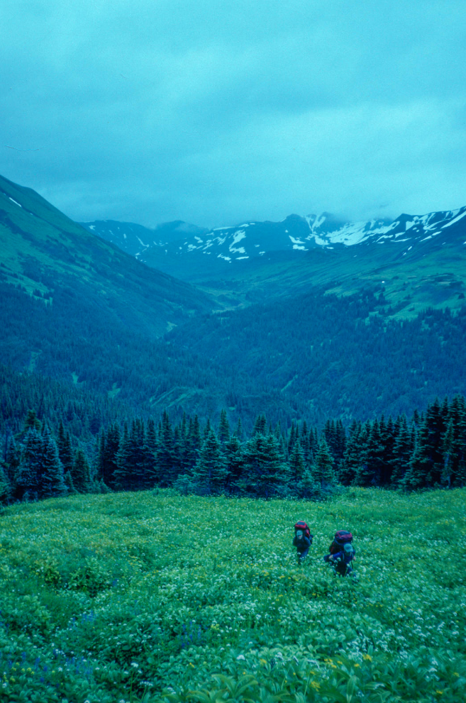 Two people hiking through an alpine field. It's foggy and gray out, with snowcapped mountains in the background.