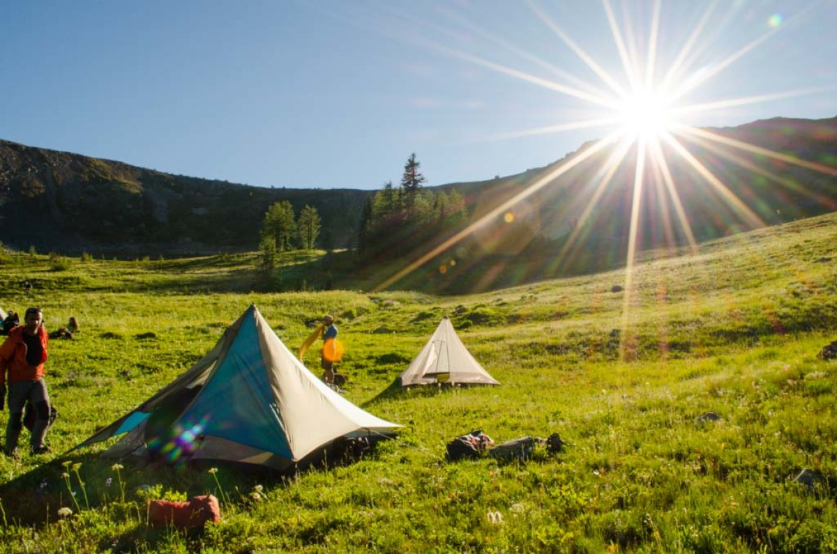 Setting up tents in a grassy field with the sun shining