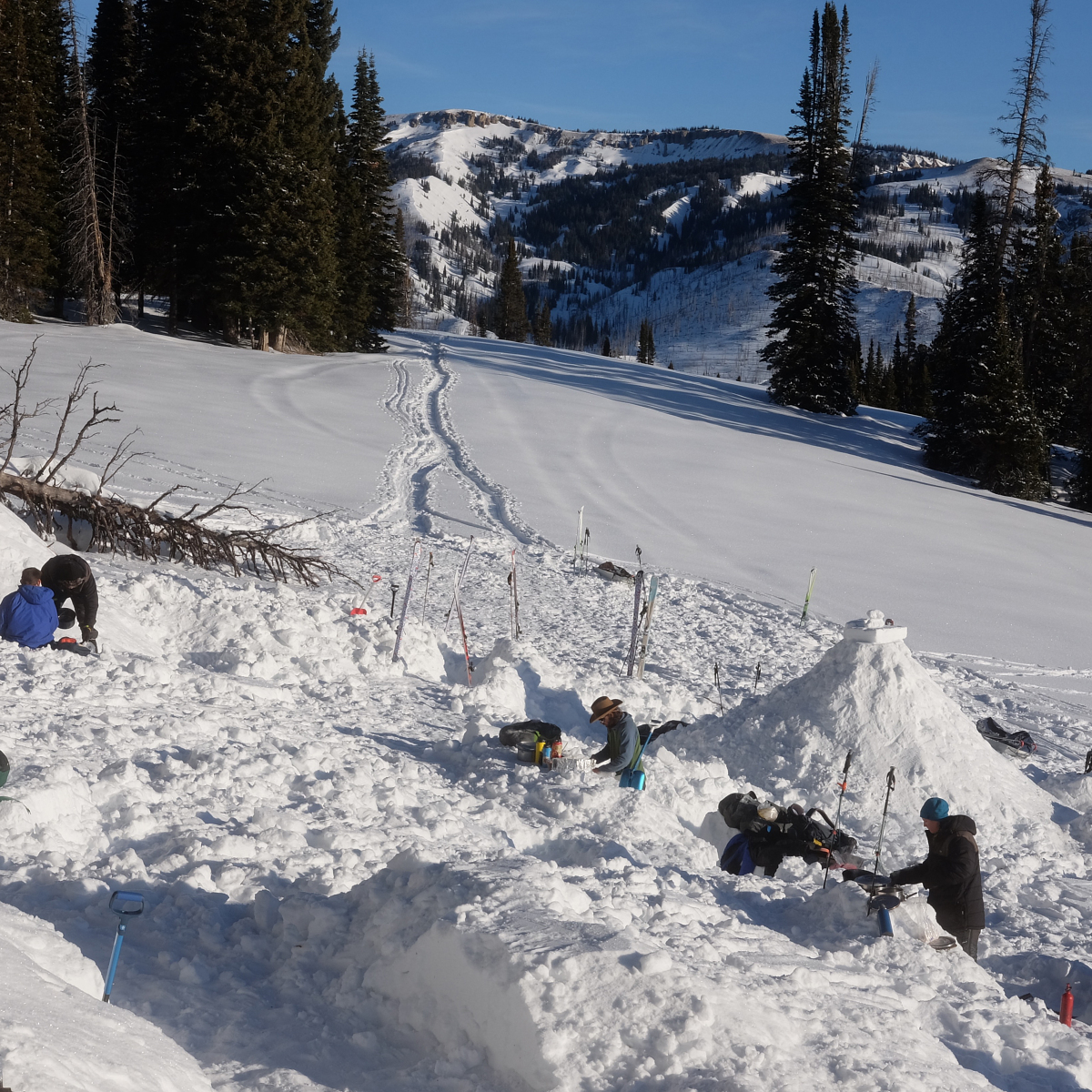 People building a snow shelter while backcountry touring