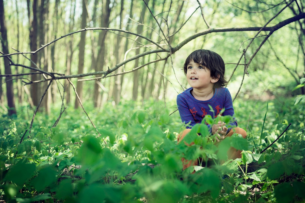 Kid in a forest looks amazed at a tree branch
