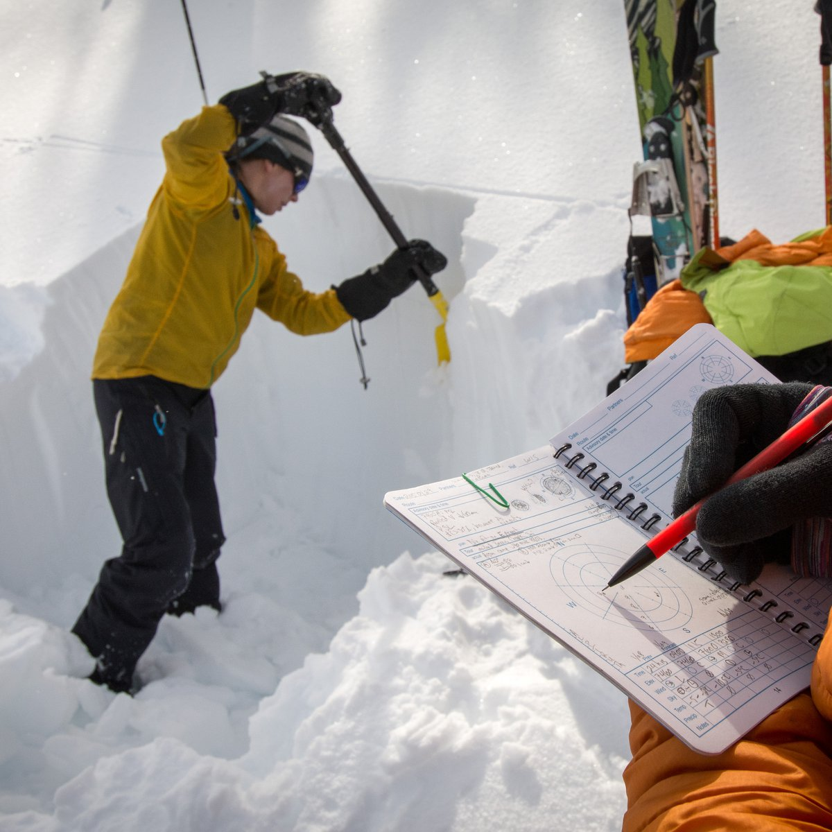 Digging a snow pit and taking notes during avalanche training